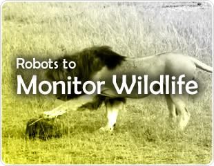 Robots to Monitor Wildlife